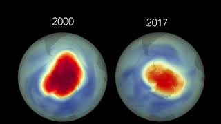 In the 1980s, scientists began to realize that ozone-depleting chem...