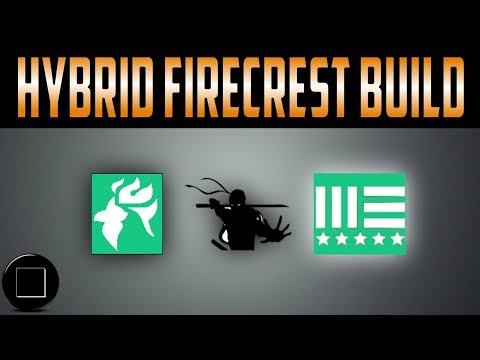 The Division - The Hybrid FireCrest Build