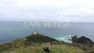 Im Norden der Nordinsel - Neuseeland - Vlog #46