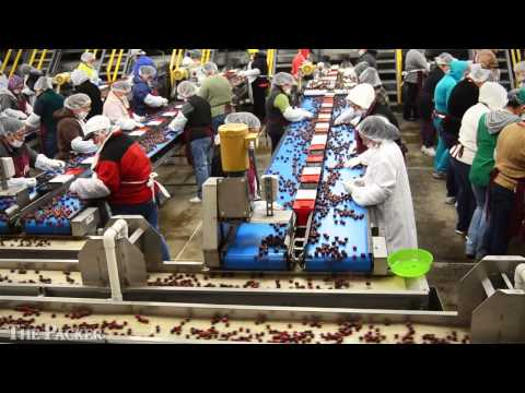 Cherry Packers Show Off State-of-the-art Lines