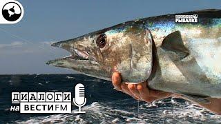Рыбалка на Кабо Верде Диалоги на Вести ФМ