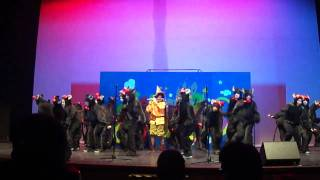 Academia musica artes rio meao