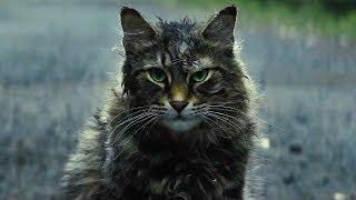 Кладбище домашних животных (2019) ОБЗОР. Мнение большого поклонника Кинга.