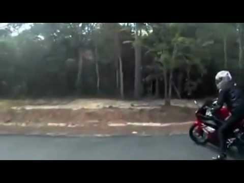 Phoenix R175 - New Motor Sport in Viet Nam.flv