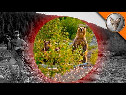 Thumbnail: BEAR SCARE! - Grizzly with Cubs