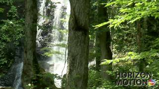 FULL HD 1080P 日本 岐阜 Gifu Japan 溪 溪水 植物 瀑布 流水 石頭 溪流 aq0002456