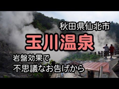 玉川 温泉 秋田