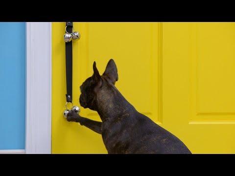 poochiebells-doggie-doorbells-|-chewy