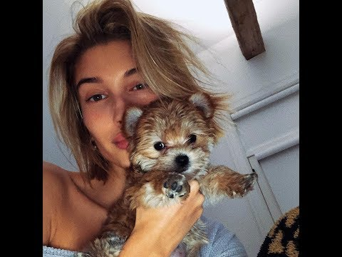 Hailey Baldwin with her dogson puppy Oscar Bieber Christmas present from Justin December 23-24 2018 Mp3