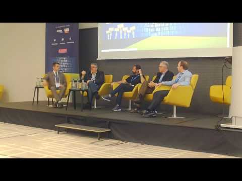 Develop a Domain and Sell a Business - DomainingEurope 2017