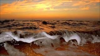 Rey Salinero -  Vasto Mar