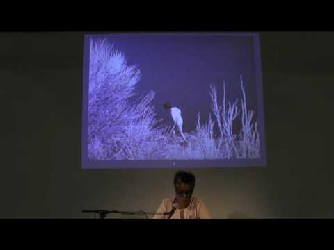 Artists on Artists Lecture - Jennie C. Jones on Agnes Martin