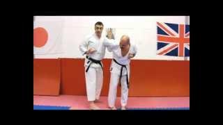 Heian Sandan Bunkai Strategies 2012 week 7 pinan bunkai oyo jutsu