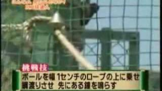 Funny Prank And Cool Japanese Shows