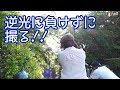 【カメラ】必殺!HDR逆光補正!【初心者】 高松編4話