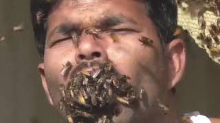 AMAZING-man puts bees into his mouth