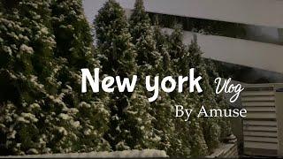 [뉴욕브이로그] 한국에서의 시간 그리고 다시 만난 뉴욕
