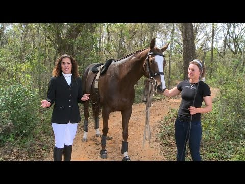 Explore Tallahassee - Red Hills Horse Trials