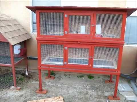 Homemade Quail Cage