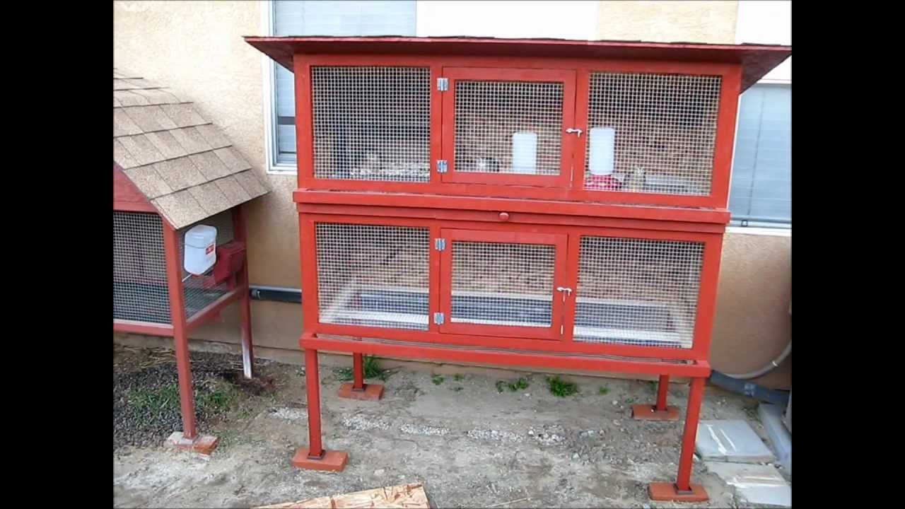 Image gallery homemade quail cages for Building a quail house