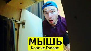 Download КОРОЧЕ ГОВОРЯ, ЗАВЕЛАСЬ МЫШЬ - ТимТим. Mp3 and Videos
