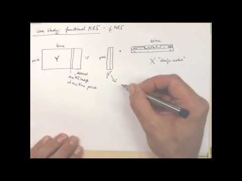 7.3 Case Study: Functional MRI | 7 Regression | Pattern Recognition Class 2012