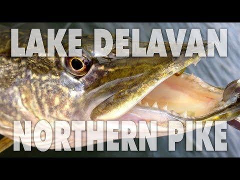 Northern Pike PERSONAL BEST At Lake Delavan, Wisconsin!