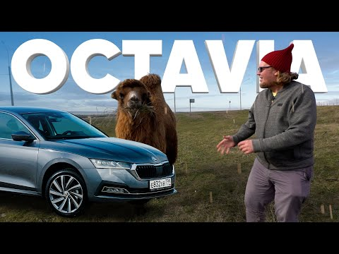Новая Skoda OCTAVIA - Большой тест-драйв