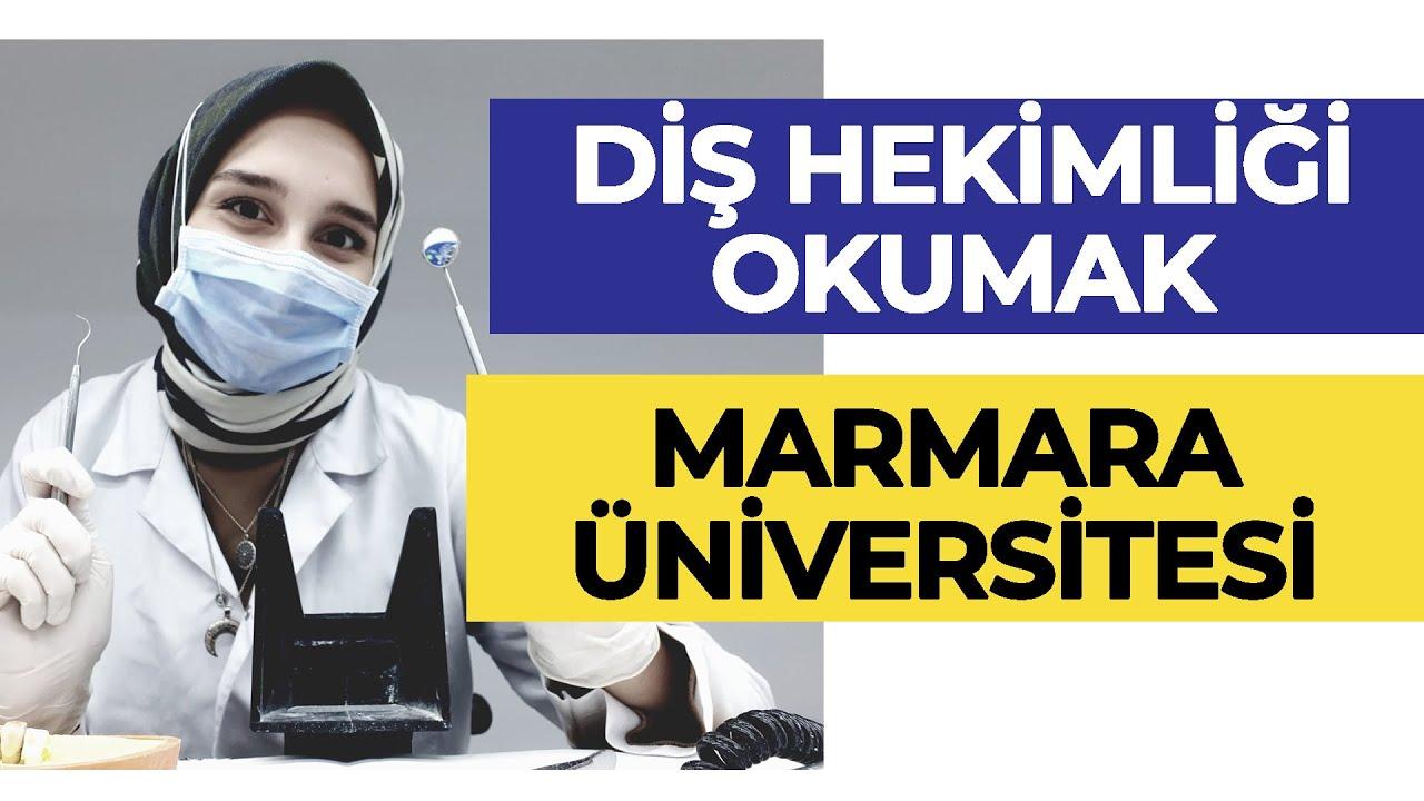 Marmara Üniversitesi - Diş Hekimliği Okumak! | Hangi Üniversite Hangi Bölüm