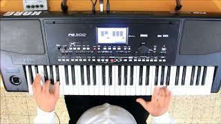 כנורות טורקיים קורג KORG PA300 Turkish Sounds Yaylilar Gundem Strings Elektro Saz And Solo Keman
