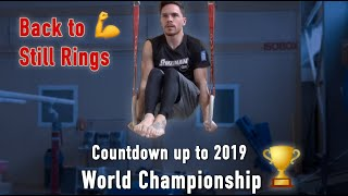 Back to Still Rings | Road to Tokyo 2020