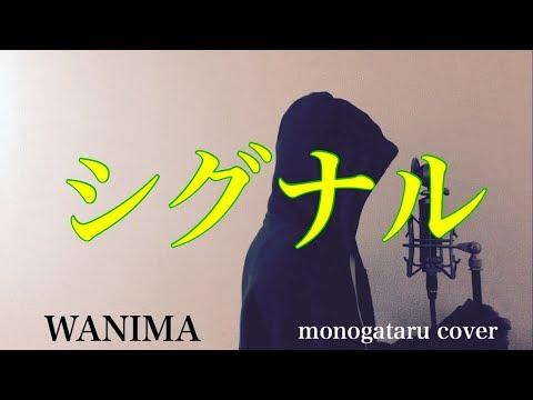 【フル歌詞付き】 シグナル - WANIMA (monogataru cover)