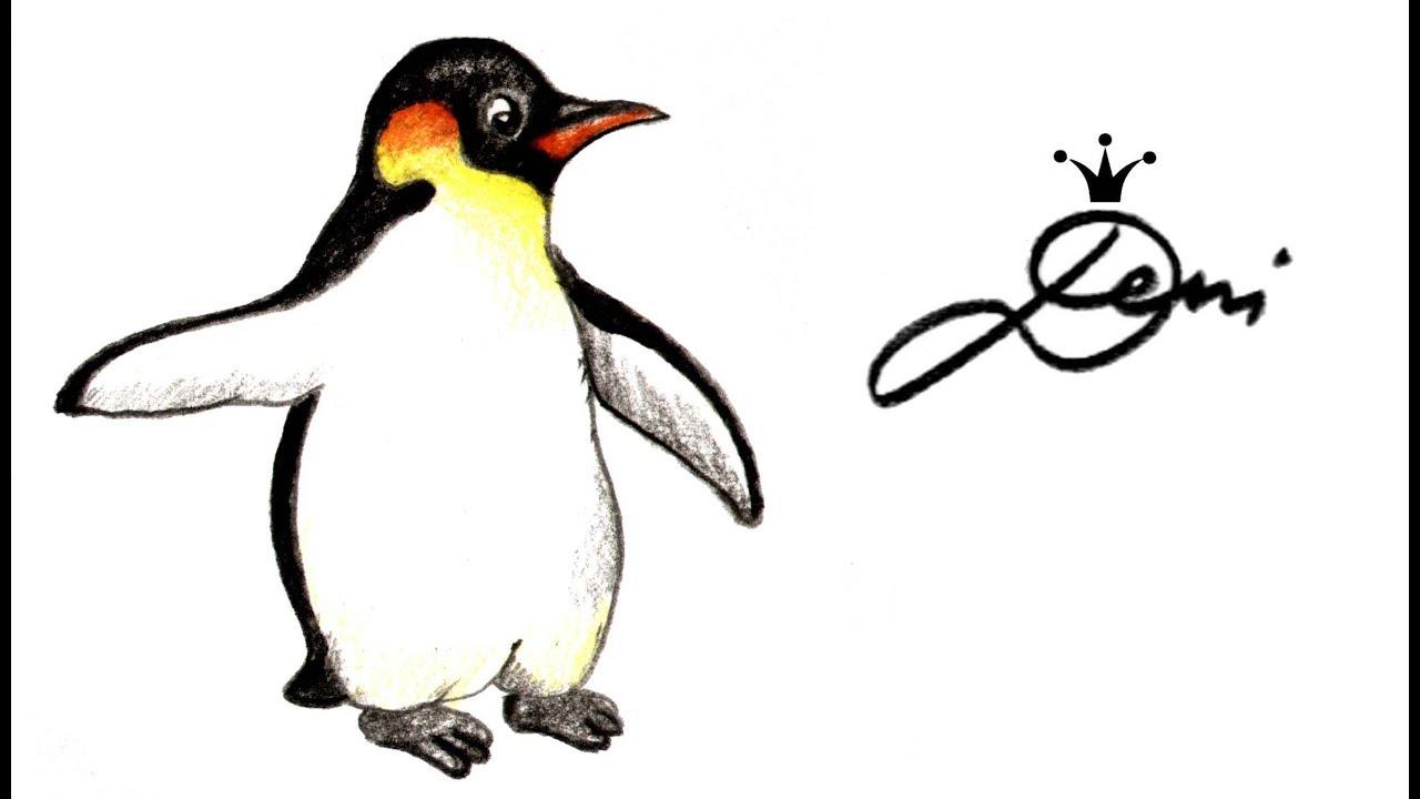 Pinguin Zeichnen Lernen Leicht Kaiserpinguin Schnell Malen How To Draw A Penguin