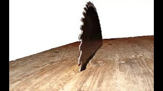 БЕЛМАШ самый лучший деревообрабатывающий станок в мире