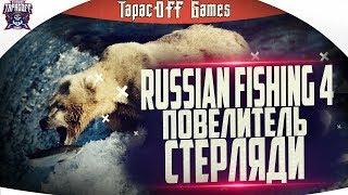 Russian Fishing 4 # Рыбалка с ТарасOFF GAMES # На Суру за стерлядью # Стрим