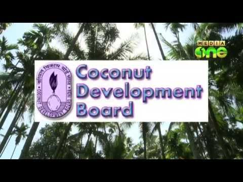 Minister sabotaging Neera project; Palakkad Coconut Producer
