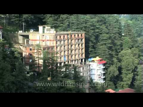 Houses in the Hills of Shimla