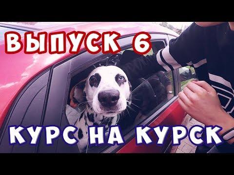 Объявления Гей Курск - Регионы