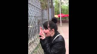 Приколы зоопарк обезьяна крик ржака общение ростов ростов-на-дону