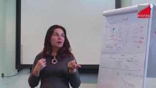 видео учёт деятельности и клиентской базы
