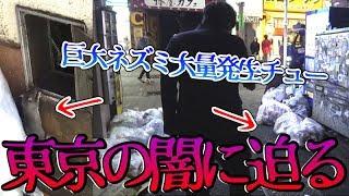 【大問題】今、東京がやばい…巨大なネズミが大量発生で大変な事に…