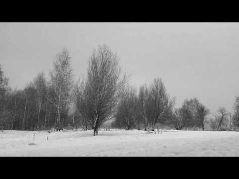 Sleep Dealer - Winter