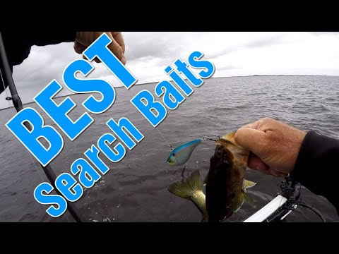 Best Search Bait For Winter Bass At Lake Toho