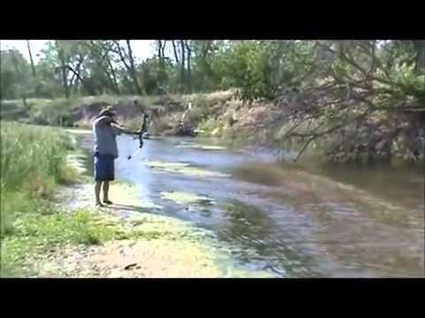 Pesca de carpas con arco y flecha
