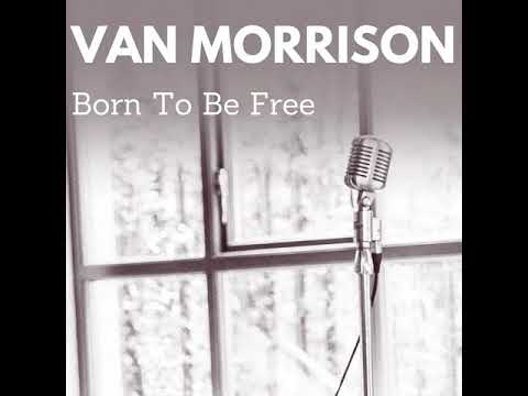 Van Morrison  Born to Be Free Protest Song No 1