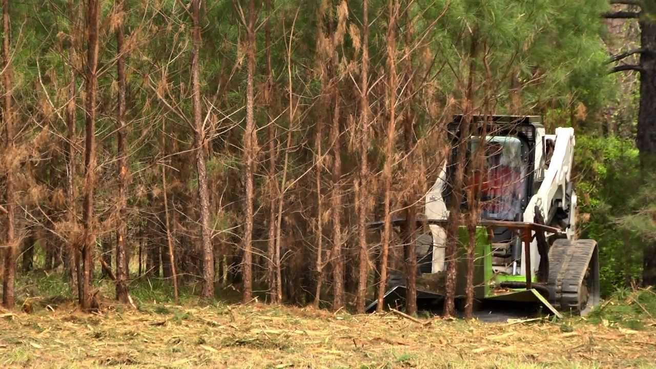 Fast tree and land clearing with disc mulcher!
