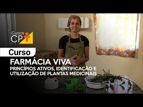Clique e veja o vídeo Curso Farmácia Viva - Princípios Ativos, Identificação e Utilização de Plantas Medicinais