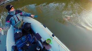 Эта щука сорвала нас с якоря! Рыбалка зимой на спиннинг!
