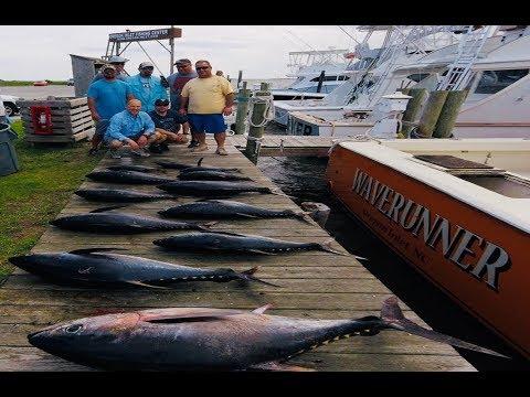 Bigeye Tuna Fishing- Oregon Inlet NC-4k
