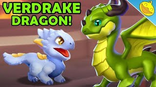 VERDRAKE DRAGON Unlocking! Hatching the SNOWPELT + BEGONIA Dragons! - DML #1134